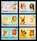 The Postage Stamp Stock Image