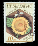 Postage Stamp isolated Stock Photo