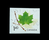 Postage Stamp isolated Stock Image