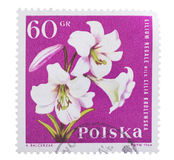 Postage Stamp isolated Stock Photography