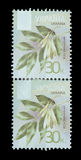 Postage Stamp isolated. TERNOPIL, UKRAINE - OCTOBER 19, 2016: A postage stamp printed in Ukraine shows a picture of an Ash ashwood , Flora, 30 k. , circa 2012 Stock Image