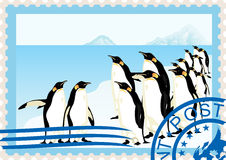 Postage stamp with penguins Stock Image