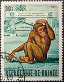 Postage Stamp. 1969. Republic of Guinea. Chimpanzee Tarzan royalty free stock image