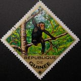 Postage Stamp. 1975. Republic of Guinea. Wild animals stock photography