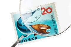 Postage stamp under magnifier with tweezers Stock Images