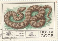 Postage stamp `Viper`. Soviet postage stamp `Viper` 1977 royalty free stock photos