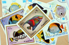 Postage stamps. Old postage stamps with fish motif royalty free stock photography