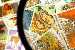 Postage stamps Stock Image
