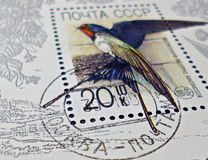 Postage stamps. Detail of CCCP postage stamp depicting swallow. Stamp was issued to the bottom of philately royalty free stock image