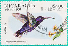 Postage stamps had been printed in Nicaragua. SARABURI, THAILAND-JUNE 01,2017: Postage stamps had been printed in Nicaragua shows image of Bird, circa 1981 Royalty Free Stock Photo