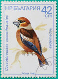Postage stamps had been printed in Russian Federation Stock Image