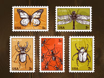 Postage Stamps With Insects Sketch. Set of postage stamps with insects drawn in sketch style on wooden background poster vector illustration Royalty Free Stock Photos