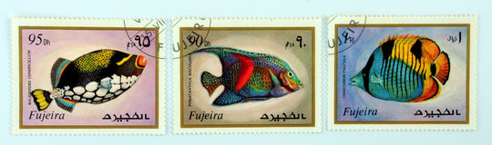 Postage stamps. Old postage stamps with fish motif stock photo