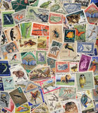Postage Stamps of Wildlife Royalty Free Stock Photography