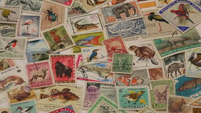 Postage Stamps of Wildlife. A collection of international postage stamps featuring wildlife stock footage