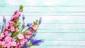 Postal con las flores de la primavera Imagen de archivo libre de regalías