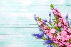 Postal con las flores de la primavera Imagenes de archivo