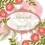 Postal con las flores dibujadas mano del briar Imagen de archivo libre de regalías