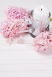 Postal con los jacintos de la vela blanca y de las flores frescas Imágenes de archivo libres de regalías