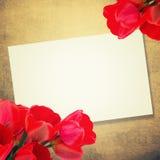 Postal con los tulipanes de las flores frescas y lugar vacío para su te Foto de archivo