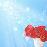 Postal con los tulipanes elegantes de las flores Imagen de archivo