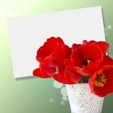 Postal con los tulipanes elegantes de las flores Foto de archivo libre de regalías