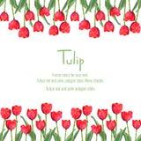 Postal con los tulipanes rojos para su texto Flores del estilo del polígono Foto de archivo libre de regalías