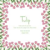 Postal con los tulipanes rosados situados en el borde Flores del estilo del polígono Fotografía de archivo