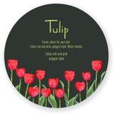 Postal con mucho de tulipanes rojos Flores del estilo del polígono Localizado en círculo oscuro, para su texto Fotografía de archivo libre de regalías