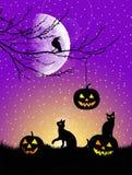 Postal de Halloween Fotos de archivo libres de regalías