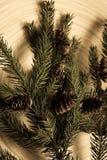 Postal de la Navidad fotografía de archivo libre de regalías
