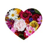 Postal de la tarjeta del día de San Valentín en forma de corazón con las flores Foto de archivo