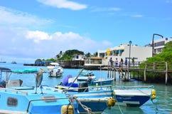 Postal de las Islas Galápagos en Santa Cruz Island Foto de archivo libre de regalías