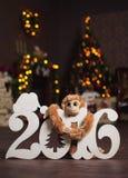 Postal del Año Nuevo con la guirnalda Imagen de archivo libre de regalías