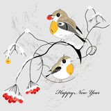 Postal del invierno con los pájaros Imagen de archivo libre de regalías