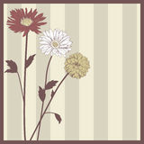 Postal elegante de la flor del vintage Fotografía de archivo libre de regalías