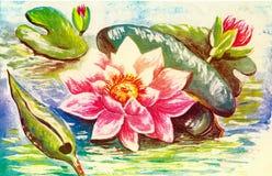 Postal floral Fotos de archivo