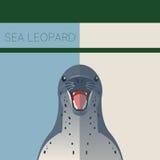 Postal plana del leopardo del mar Imagen de archivo