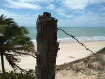Postal sur le Brésil Photo libre de droits