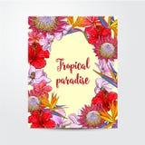 Postal, tarjeta de felicitación, diseño de la bandera con las flores exóticas, tropicales Fotografía de archivo
