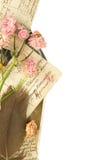 Postales de la vendimia, pluma y rosas secadas fotografía de archivo libre de regalías