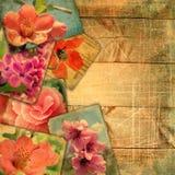 Postales viejas hermosas en tablones de madera con los rasguños Fotografía de archivo