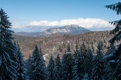 Postavaru bergsikt Royaltyfria Bilder