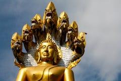 Postawa Buddha Obrazy Royalty Free