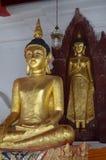 Postawa Buddha zdjęcie royalty free