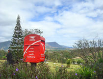 Postbox bij toeristisch gezichtspunt en pijnboomboom op heuvelberg Stock Afbeeldingen