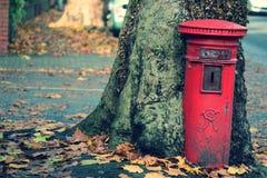 Postbox, der aus Baum heraus wächst Lizenzfreie Stockfotos