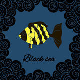 Postcard, Banner Black Sea. Otkrytka, banner Black sea, hand drawing the sea and the fish, blue background and black waves Royalty Free Stock Images