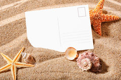 Postcard on a beach. Holiday beach concept with shells, sea stars and an blank postcard Stock Image