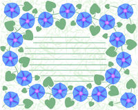 Postcard with branches of flower Ipomoea, morning glory. Stock Image